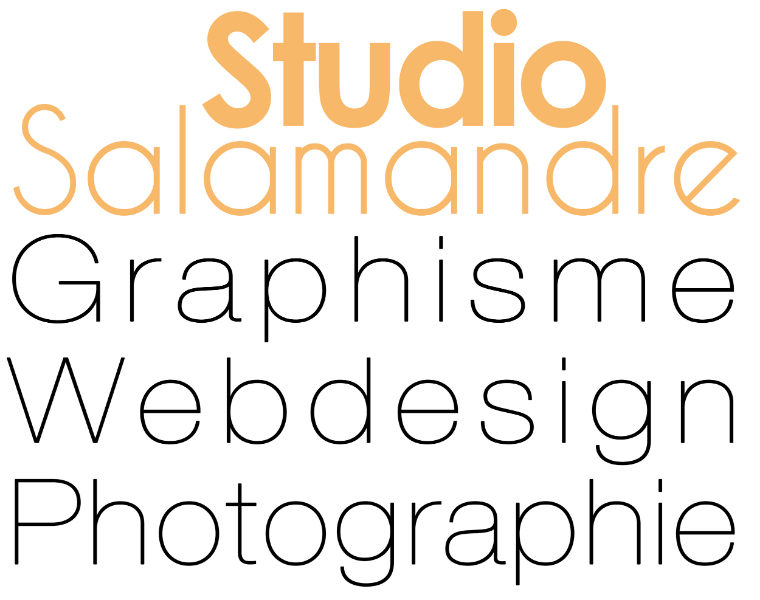 Nouvelle identité visuelle du Studio Salamandre
